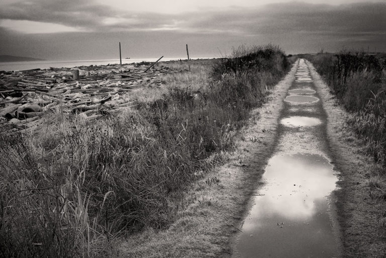 Pathway After Rainfall, Island View Beach Regional Park.